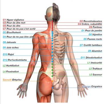 Le langage symbolique du corps