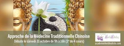 Cours Approche médecine chinoise-image boudha et yinyan