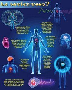 Schéma humain-bienfait du coeur.